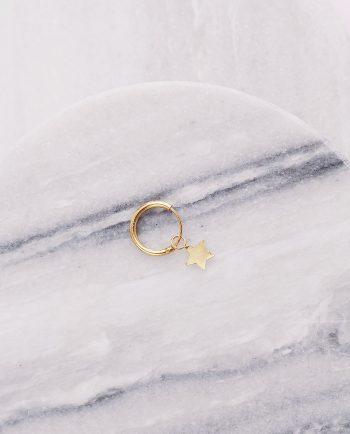 sidabrinis paauksuotas auskaras su žvaigžde